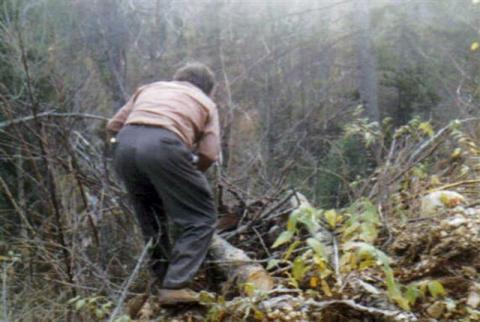 Yvon en train de ramasser du bois.